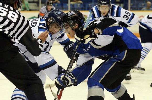 Nathan Noel - Saint John Sea Dogs