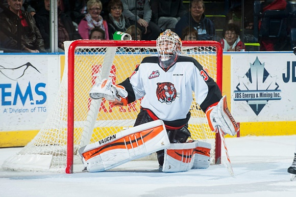 Hard work, opportunity leads to NHL contract for Medicine Hat's Schneider