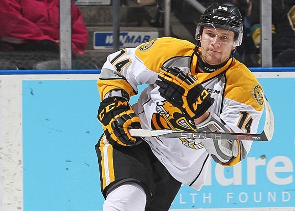 Photo: Pavel Zacha has 51 points (23 goals, 28 assists) in 44 games for the Sarnia Sting. (Courtesy of Claus Andersen/Getty Images)